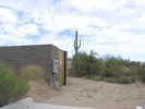 cells.fountainhills.larson_cactus.20050823.P1010038.jpg