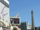 wa.flamingo.nv.20060806.DSCN2478.JPG